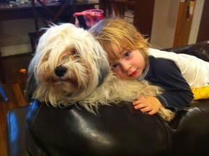 Dogs great with children